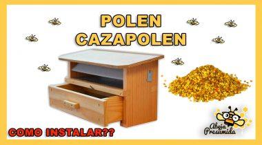 Cazapolen y Polen 🐝🧡🎥 Como instalar