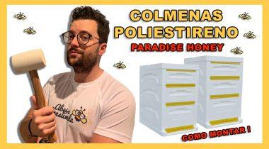 Como Montar Colmenas de Poliestireno 🐝🧡🎥 Colmenas Beebox