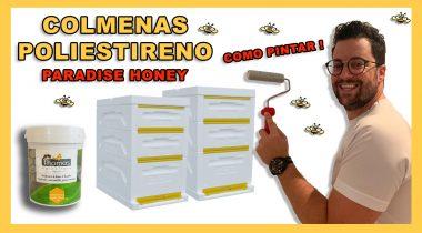 Colmena Poliestireno Beebox 🐝🧡🎥 Como Pintar