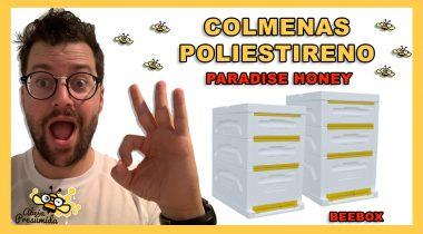 Colmena Paradise Honey 🐝🧡🎥 VENTAJAS frente a las colmenas de Madera