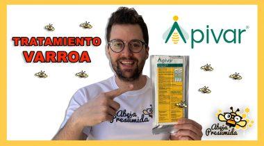 Apivar 🐝🧡🎥 Tratamiento Varroa