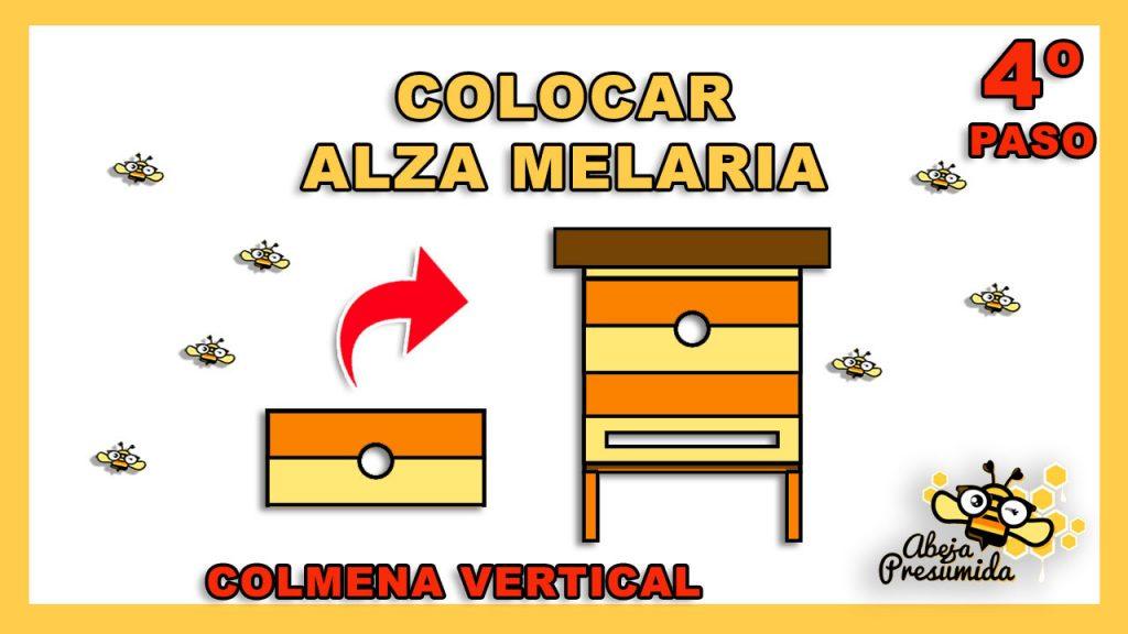 COLOCAR ALZA MELARIA