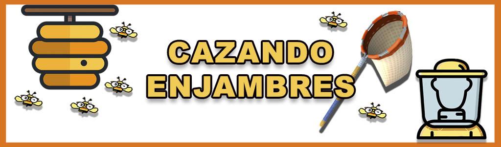 CAZANDO ENJAMBRES