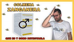 Colmena Zanganera 🐝🧡🎥Que es ?